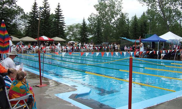 Swimming Pool Needs Renovation Repairs Grasslands News